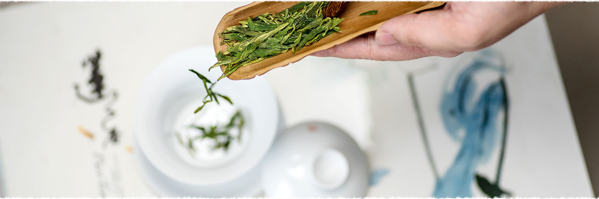 Les vertus et bienfaits du thé vert, du thé blanc et du Oolong.