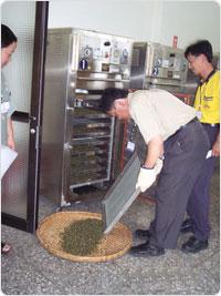 Torréfaction moderne TieGuanYin YunXiang