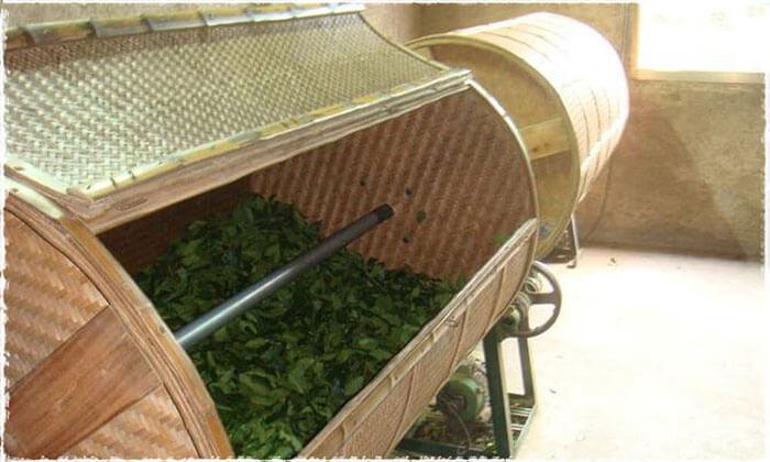 Brassage des feuilles de TieGuanYin  dans un tonneau de bambou