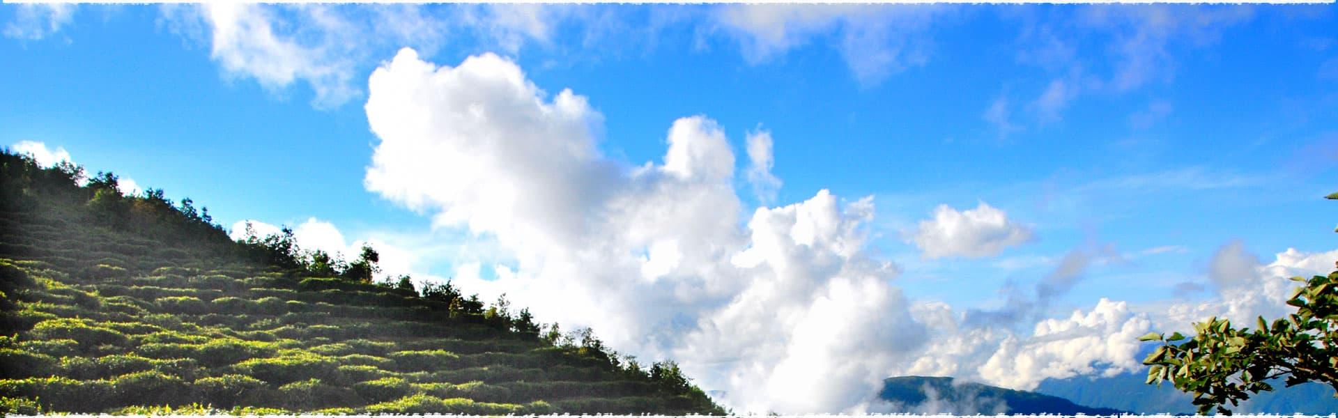 Promotion WuLong haute montagne de Taïwan