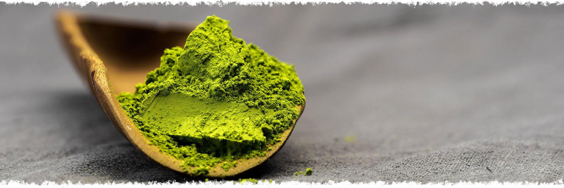 Panna cotta aux fraises, parfumée au thé vert en poudre type Matcha.