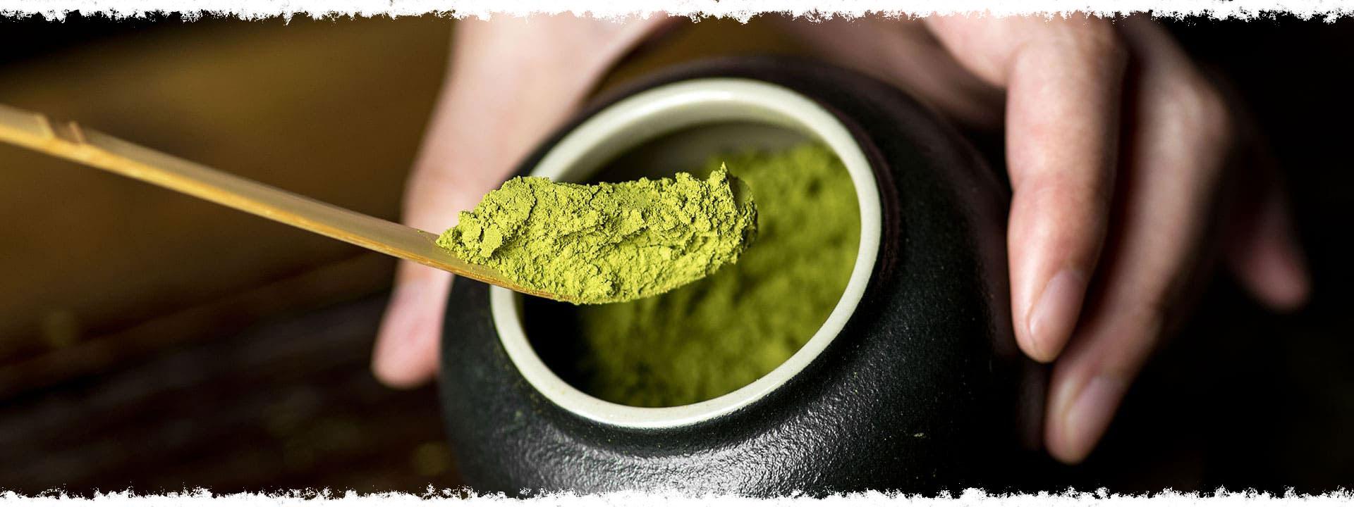 Gâteaux financiers parfumés au thé vert en poudre type matcha.