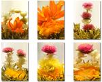 Six nouvelles fleurs de thé vert haut de gamme et un bateau à thé pour le GongFuCha.